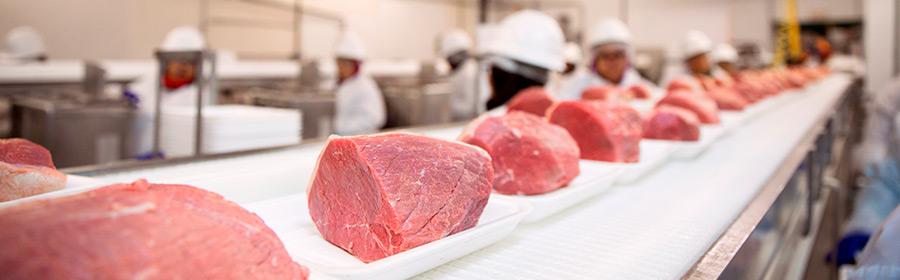 kødforædling cover